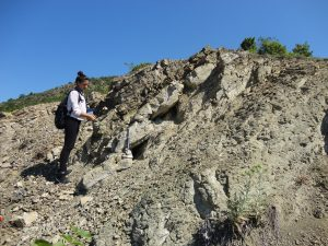 Geological Mapping Gallery - Image 1