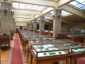 Museum of Paleontology and Historical Geology-3162
