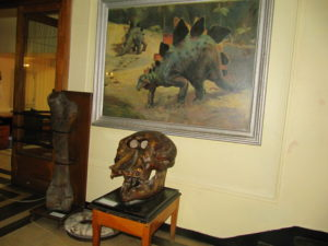 Museum of Paleontology and Historical Geology-3180